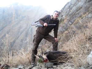 Gams jagd in Rumänien 1 (Small)
