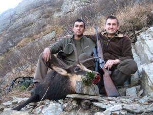 Gams jagd in Rumänien 3 (Small)