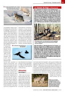 lup revista-page-002